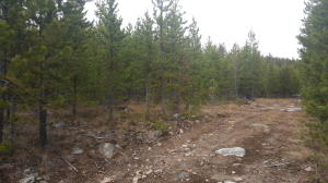 Tbd Granite Road, Philipsburg, MT 59858