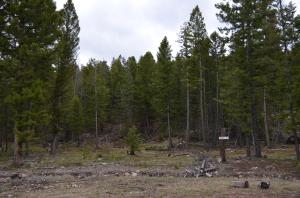 Lot 31-A Arrowstone Subdivision, Philipsburg, MT 59858