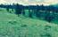 Parcel A-1 Camp Creek Road, Sula, MT 59871