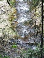 3100 Pardee Creek Road, Superior, MT 59872