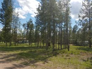 267 Eagle Drive, Seeley Lake, MT 59868