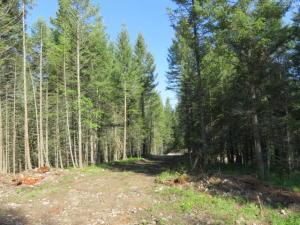 28 Wild Turkey Lane, Kalispell, MT 59901