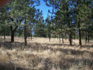 River Ridge West, Lot 18, Plains, MT 59859
