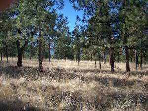 Loberg Road, Lot 10, Plains, MT 59859