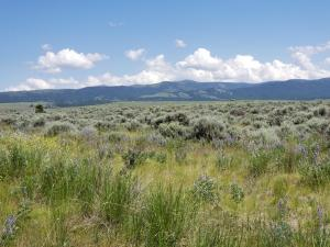 Lot 5 Wheat Grass Road, Stevensville, MT 59870