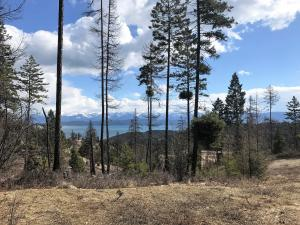 459 Ridge Line Drive, Lakeside, MT 59922