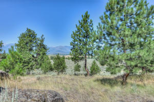 Lot 31 Stock Farm Road, Hamilton, MT 59840