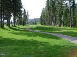 100 Trestle Creek Drive, Saint Regis, MT 59866