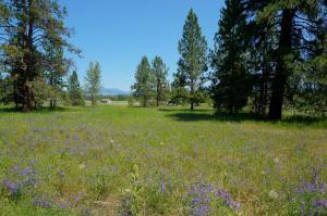 Nkn Big Sky, Missoula, Montana