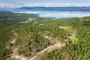 Nhn Blacktail Heights Road, 119 Acres, Lakeside, MT 59922