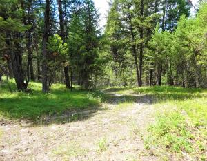 Pinkham Creek Road, Rexford, MT 59930