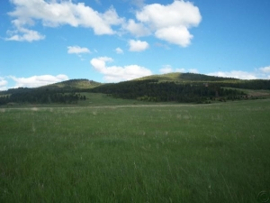 Hwy 38 Lot Amended Subdivision, 10a-Arrowstone, Philipsburg, MT 59858