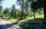 Arnica Road below home