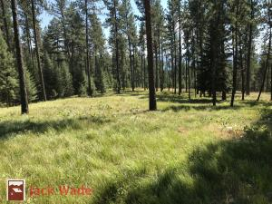 22 Acres Whitetail Ridge Road, Huson, MT 59846