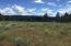 17 acres with building site overlooking Carpenter Lake