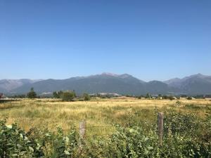Nhn Middle Burnt Fork, Stevensville, Montana 59870