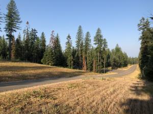 Lot 4 Jewel Basin Ranch Road, Bigfork, MT 59911