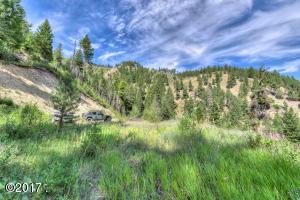 Nhn Leaning Pine Trail, Hamilton, MT 59840