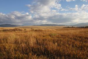 Running W Ranch, Missoula, MT 59808