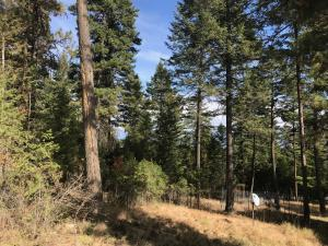 155 Troutbeck Road, Lakeside, MT 59922
