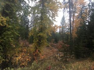 53 Twin Creek, De Borgia, Montana