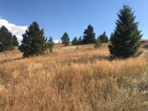 11506 Pole Cat Road, Missoula, MT 59808