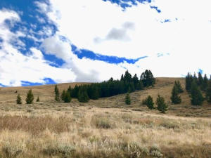 90 Mountain View Trail, White Sulphur Springs, MT 59645