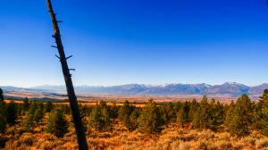 2343 Sapphire Ranch Trail, Corvallis, MT 59828