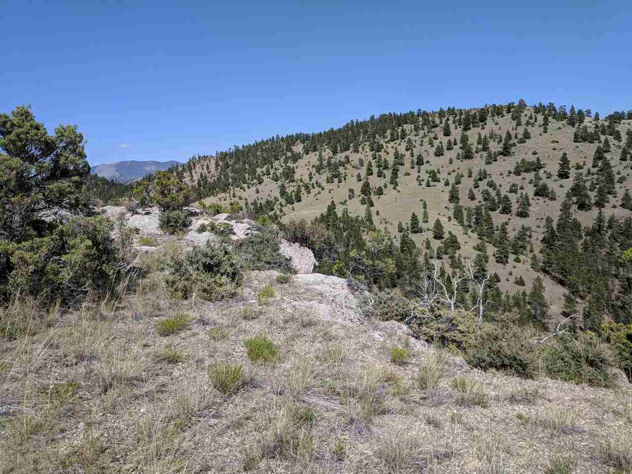 Tbd Craigle Lane, Helena, MT 59602 (MLS# 1302262) - Helena