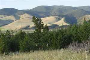 Tbd Mothering Pasture, Helmville, Helmville, MT 59843