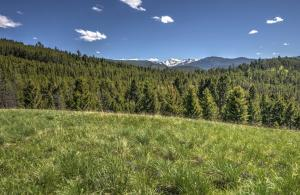 Nhn East Fork Road, Philipsburg, MT 59858