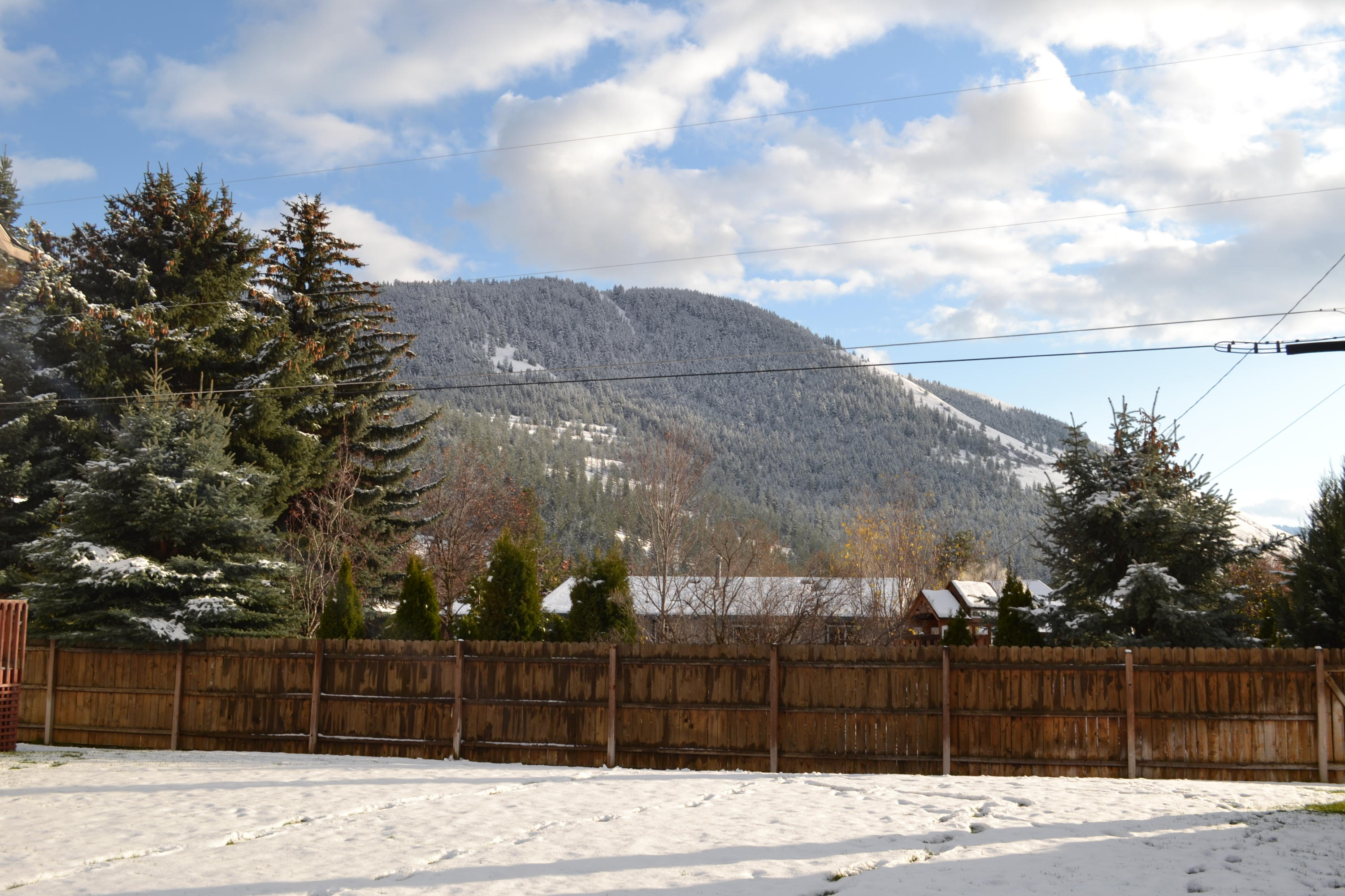 Property Image #31 for MLS #21813713