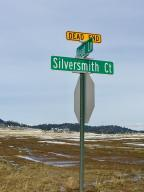 670 Silversmith Court, Helena, MT 59602