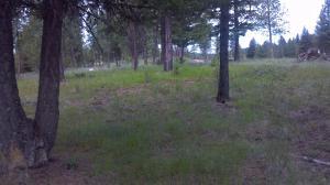 Lot S6 Emerald Lake Loop, Seeley Lake, MT 59868
