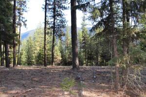 South Seven Mile Creek Road, Saint Regis, MT 59866