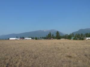 Nhn Peak View Drive, Stevensville, MT 59870