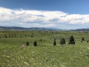 Tumbleweed Lane, Butte, MT 59701
