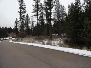 185 Bear Hollow Drive, Bigfork, MT 59911