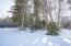 110 Lone Cedar Lane, Columbia Falls, MT 59912