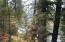 Unk Trestle Creek Drive, Saint Regis, MT 59866