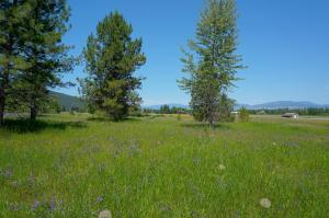 Nka Big Flat, Missoula, Montana