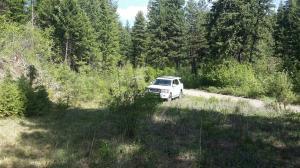 135 West Mountain Creek Road, Alberton, MT 59820