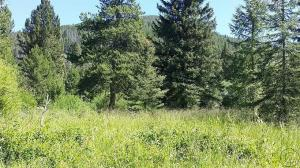 Tract 2 Belle Avenue, Philipsburg, MT 59858