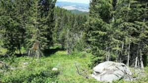 Tract 5 Belle Avenue, Philipsburg, MT 59858