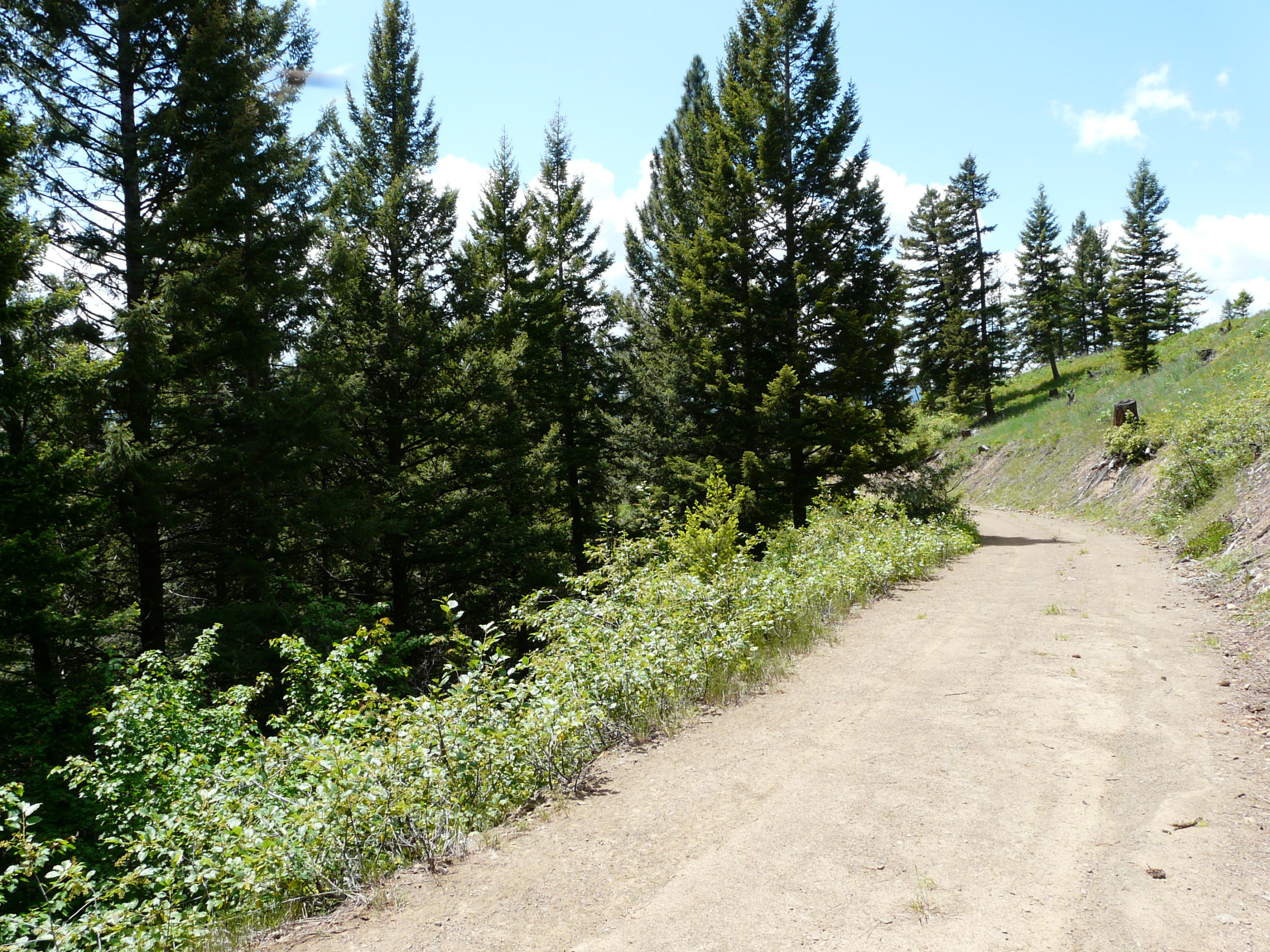 Property Image #15 for MLS #21902416