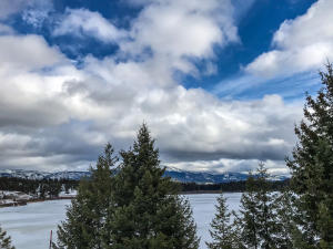 Gorgeous Loon Lake views from this easy access, beautiful 170 acre parcel.