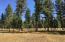 298 Scenic Drive, Condon, MT 59826