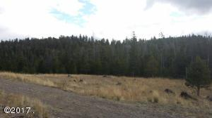 Lot 46a Downrange Road, Helmville, MT 59843