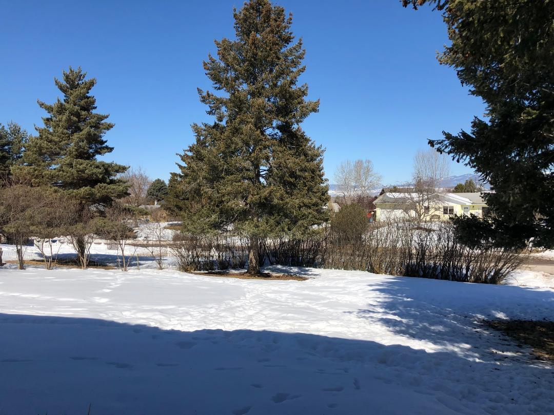 Property Image #2 for MLS #21903032