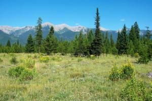 Nhn Pine Meadow Lane, Condon, MT 59826